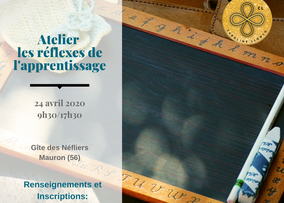 Atelier « réflexes et apprentissage » 24 avril 2020